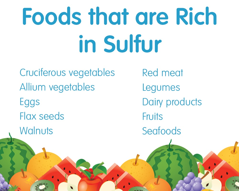 Sulfur Rich Foods: Boost Your Sulfur Intake - Amino Acids Today