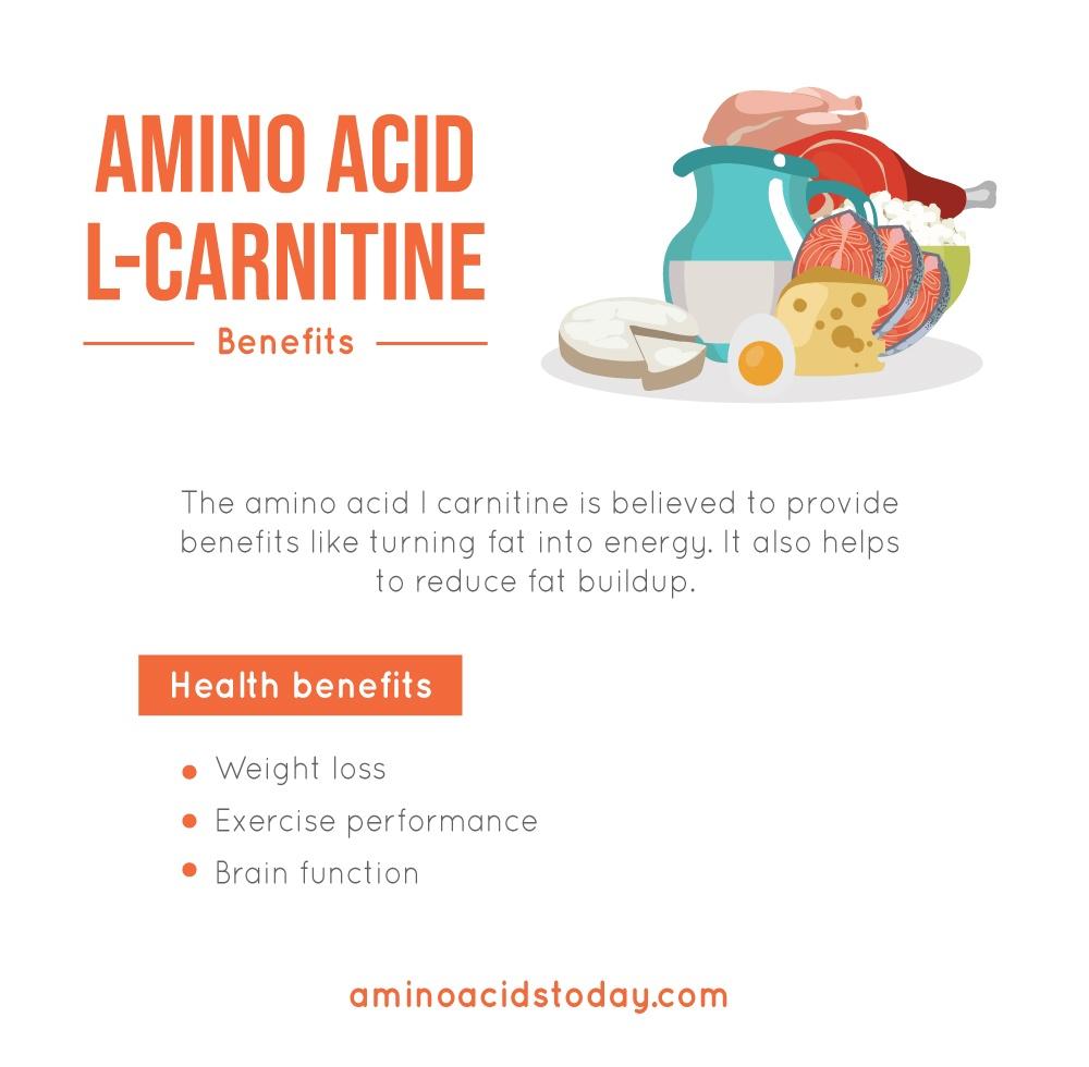 Benefits of Amino Acid L-Carnitine