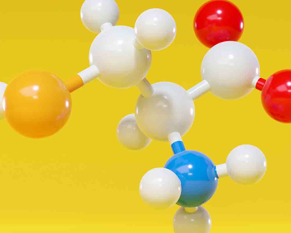 amino acid l cysteine