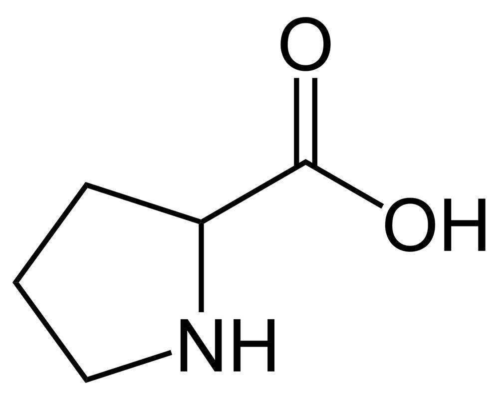 Amino Acid Proline Structure and Function