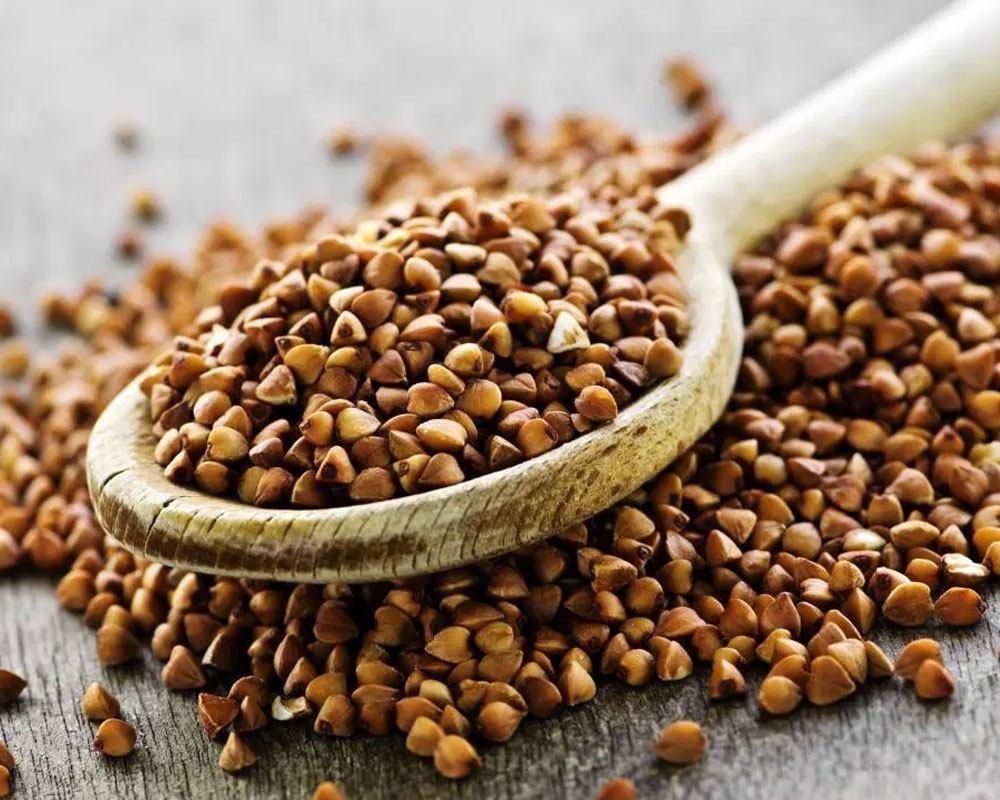 Buckwheat Amino Acids