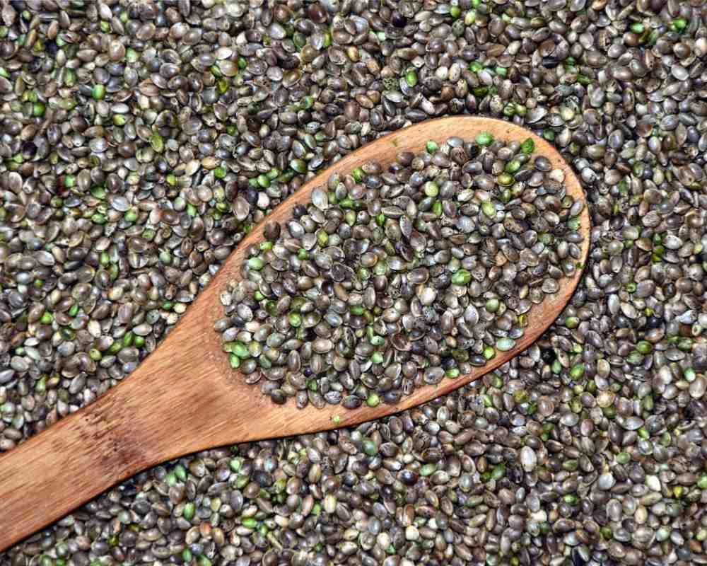 Amino Acids in Hemp seeds